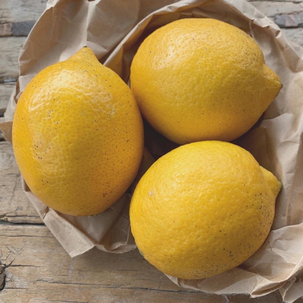 無農薬プレミアムレモン1.5kg