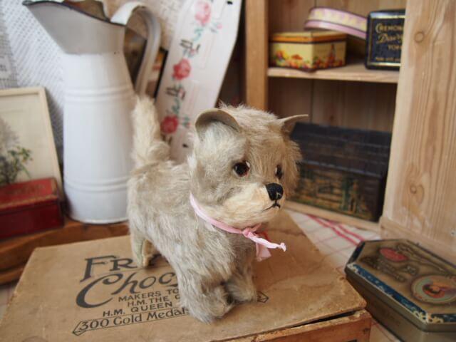 イギリスアンティーク Cat