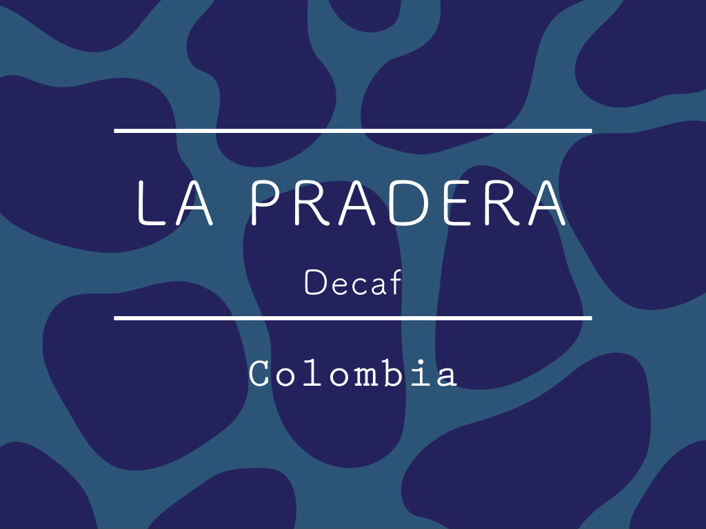 【200g】カフェインレス コロンビア / LA PRADERA Decaf