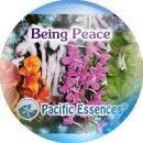 ビーイングピース[Being Peace]『平和の創造』