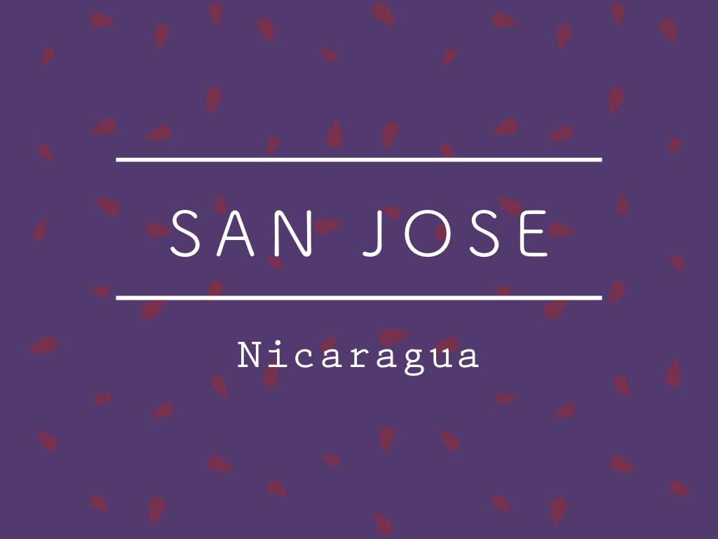 【お得!500g】ニカラグア /  SAN JOSE