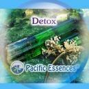 デトックス[Detox]『エネルギーの浄化』