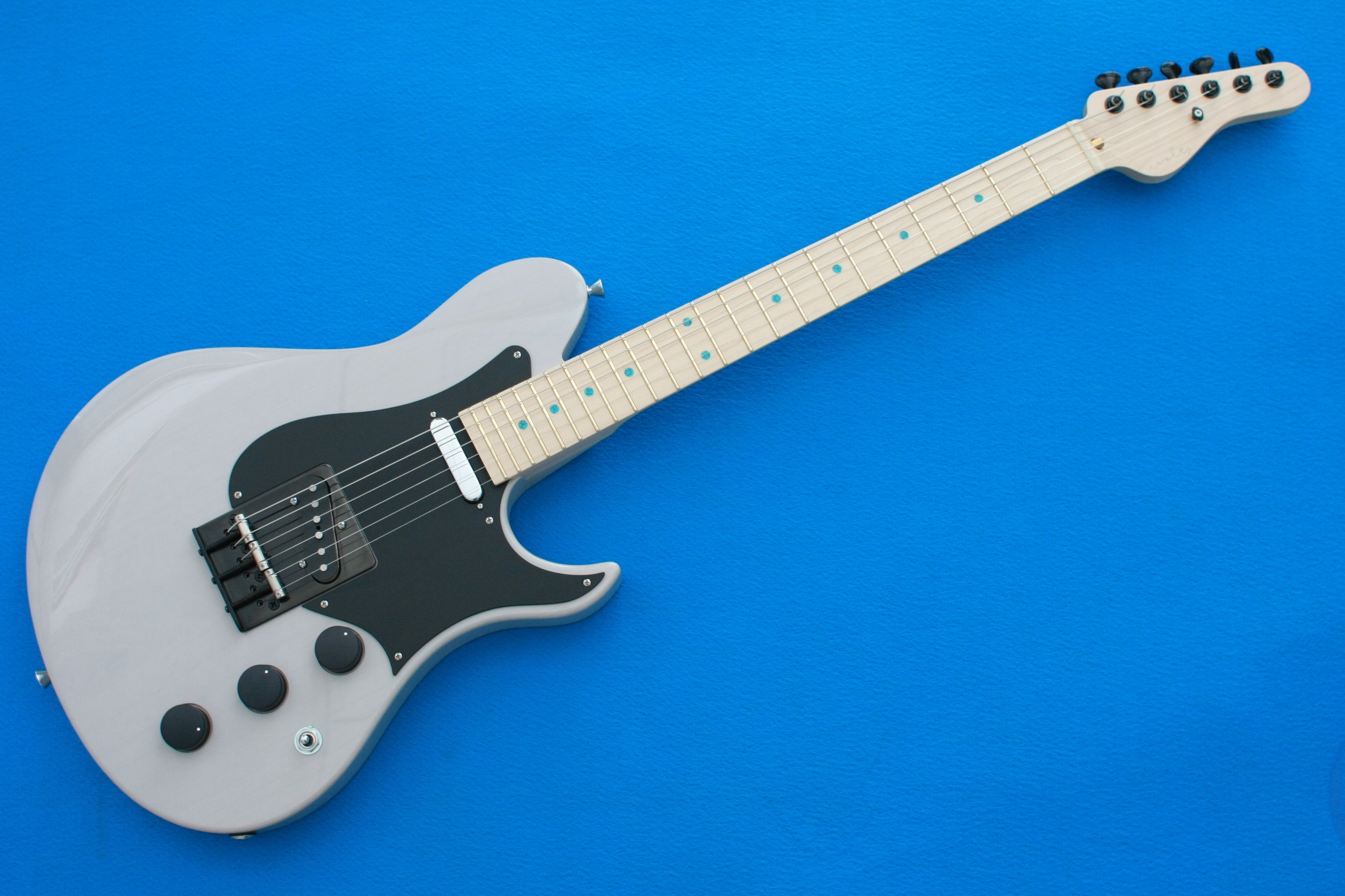 """SOLD 2018新作  """"Neocaster Knox"""""""
