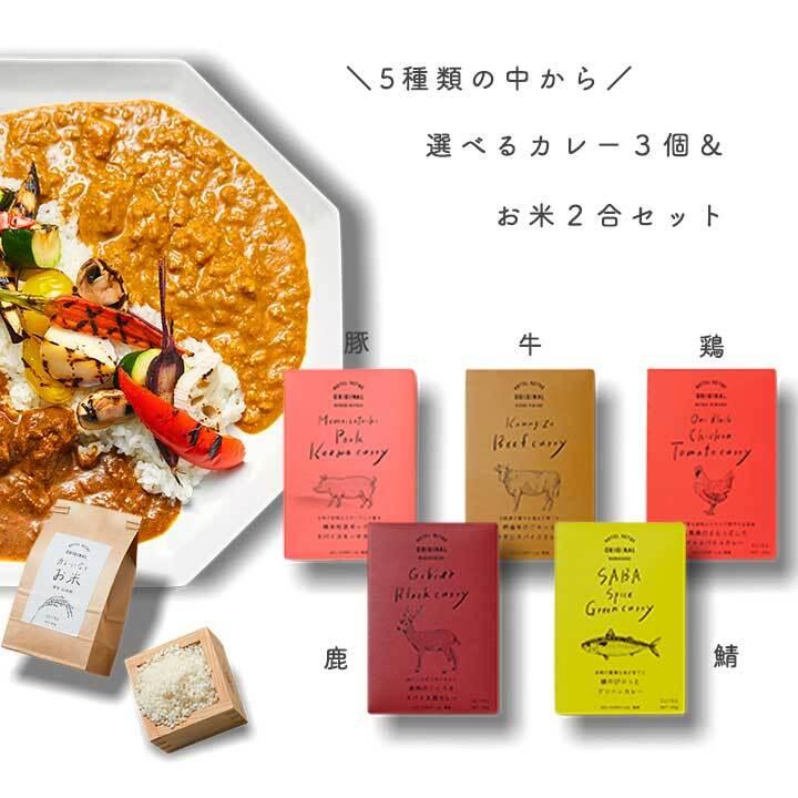 スパイスカレー&お米のセット【選べるレトルトカレー3種&カレーに合うお米 2合】【送料無料】