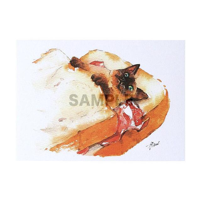 台湾ポストカード 水彩猫「吐司被被」
