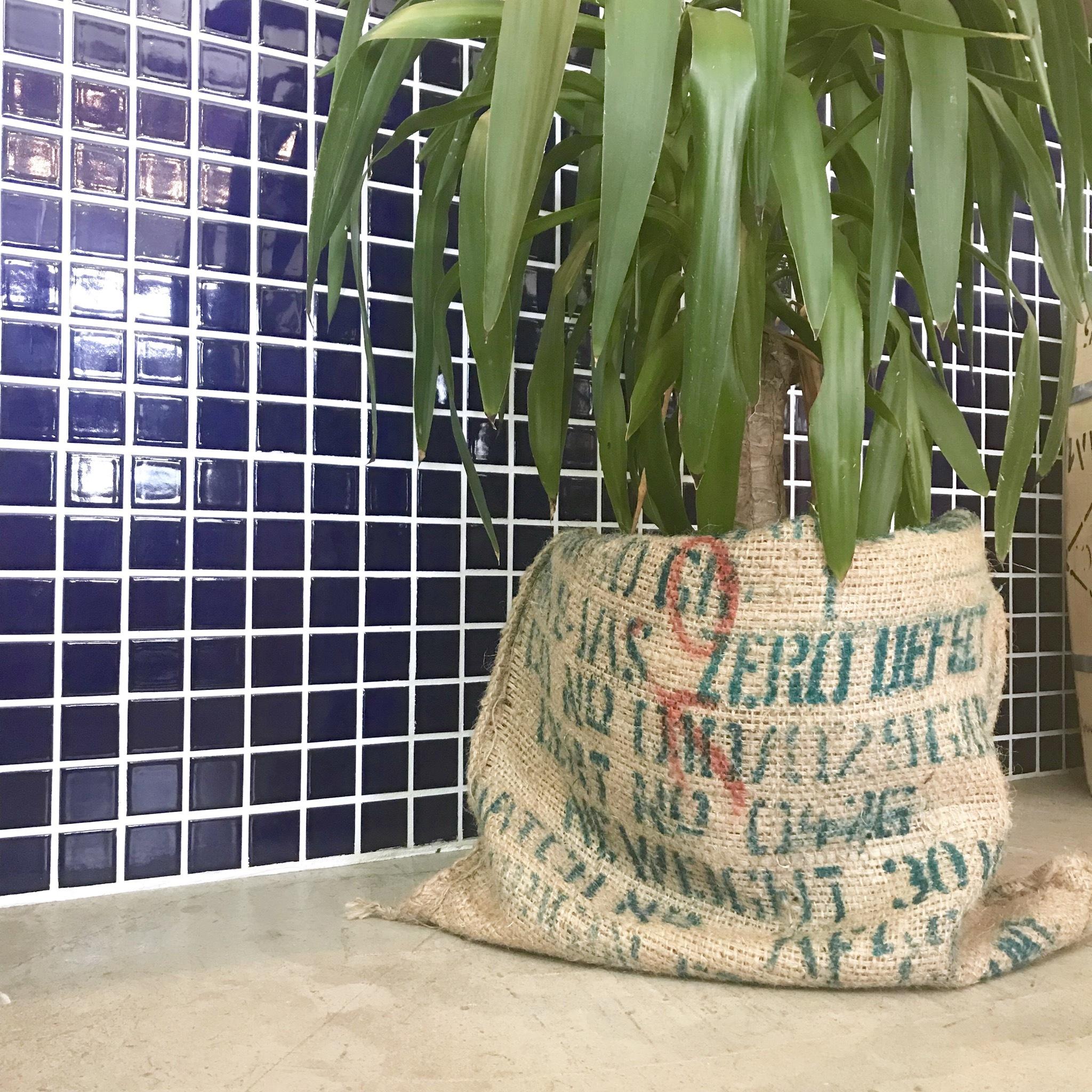 コーヒー豆袋【ETHIOPIA】
