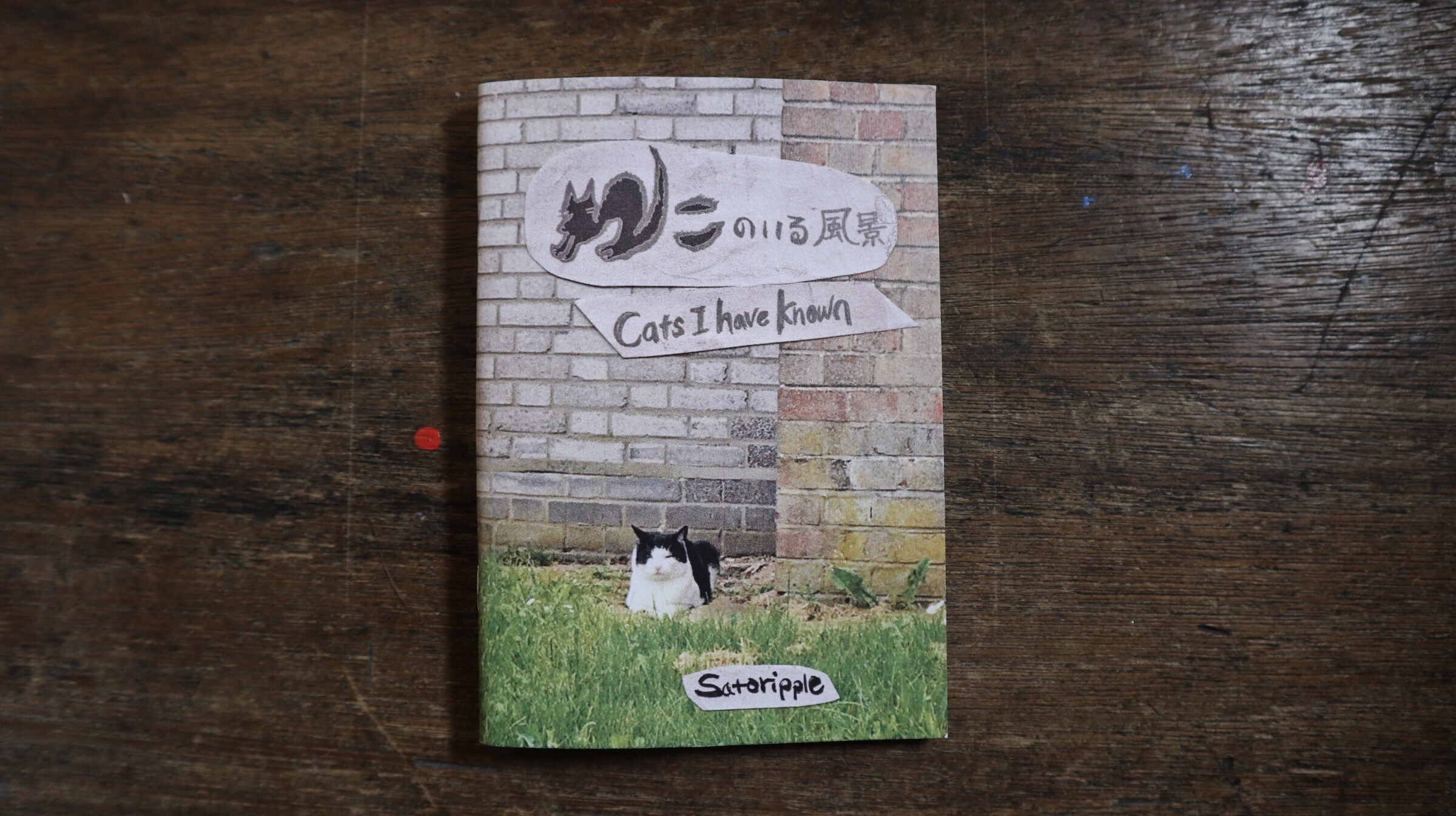 CATS I HAVE KNOWN / ねこのいる風景 (缶バッジ付き)