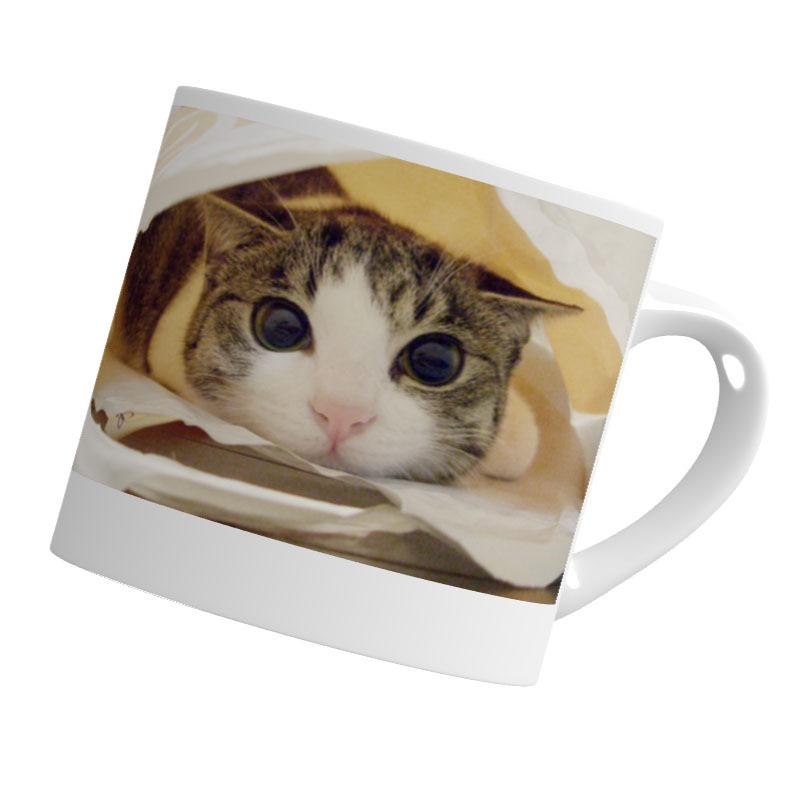 マグカップ(小)直径7.2x高さ7(cm) たれジェリー 猫のアイシス&ジェリー(The Cat who.... ザ・キャット・フー 猫 ねこ ネコ ラッピング可能商品 贈り物 プレゼント ギフト GIFT)