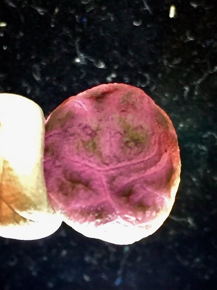 2) 「紫ゴビアゲート・卑弥呼・ビーズ」2021・人生応援価格