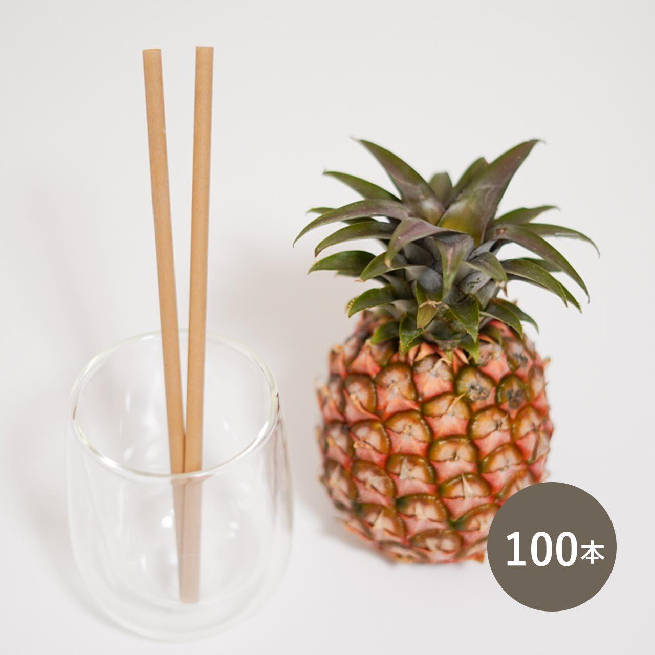 パイナップル葉繊維ストロー 個包装  100本