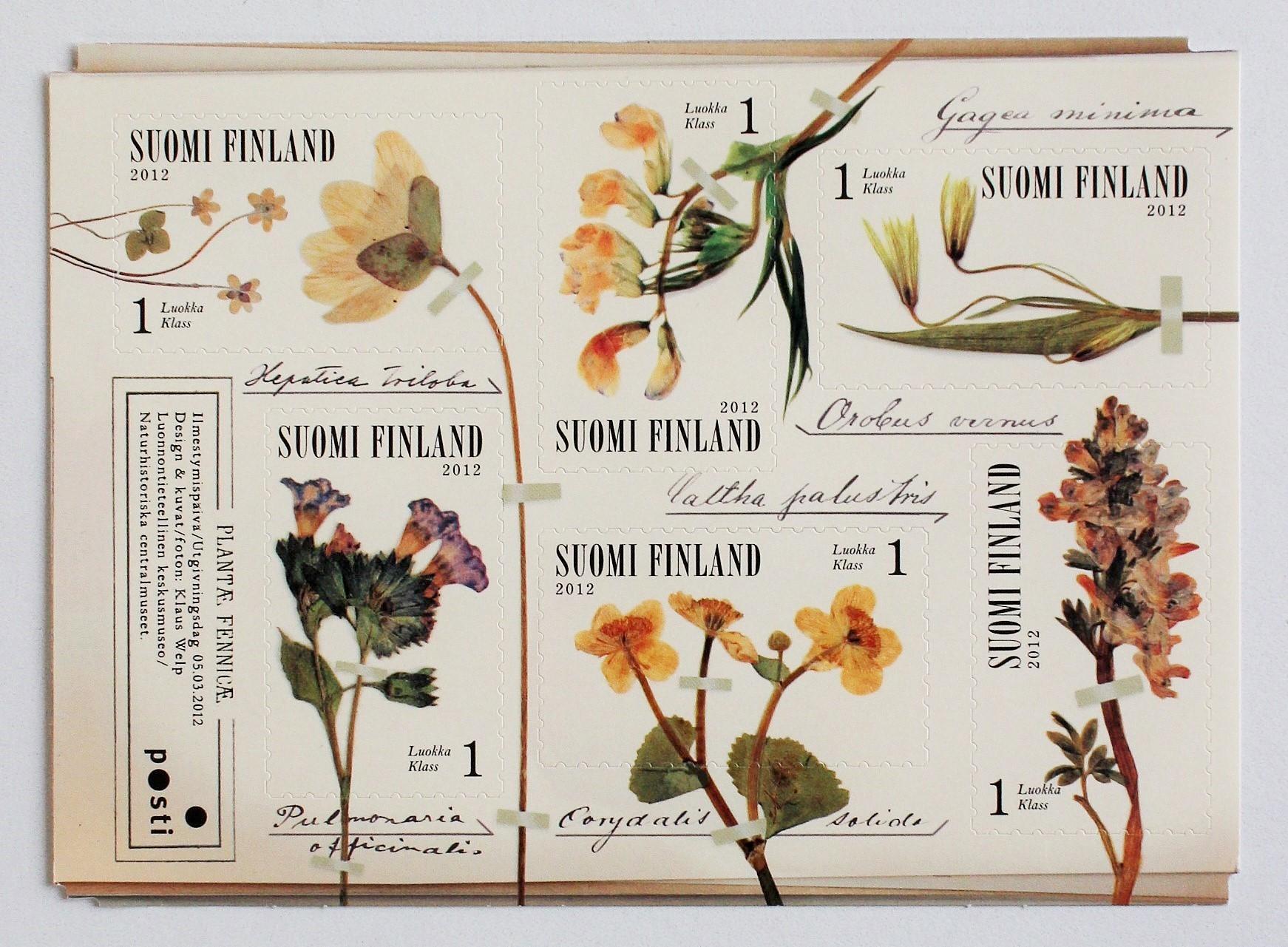 春の花 / フィンランド 2012