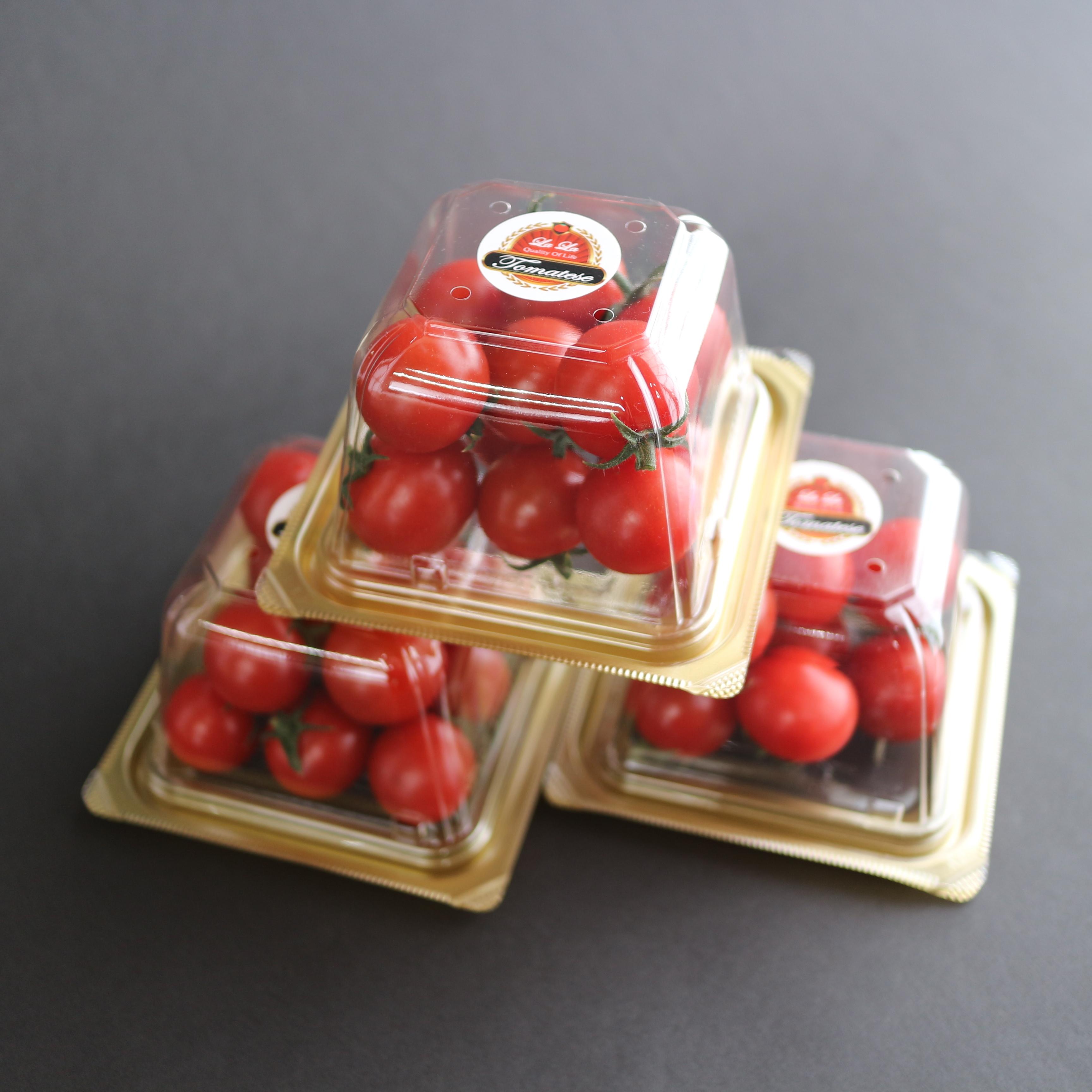 【送料無料】ララ・トマテーゼ フルーツトマト ギフトパック150g × 3個セット