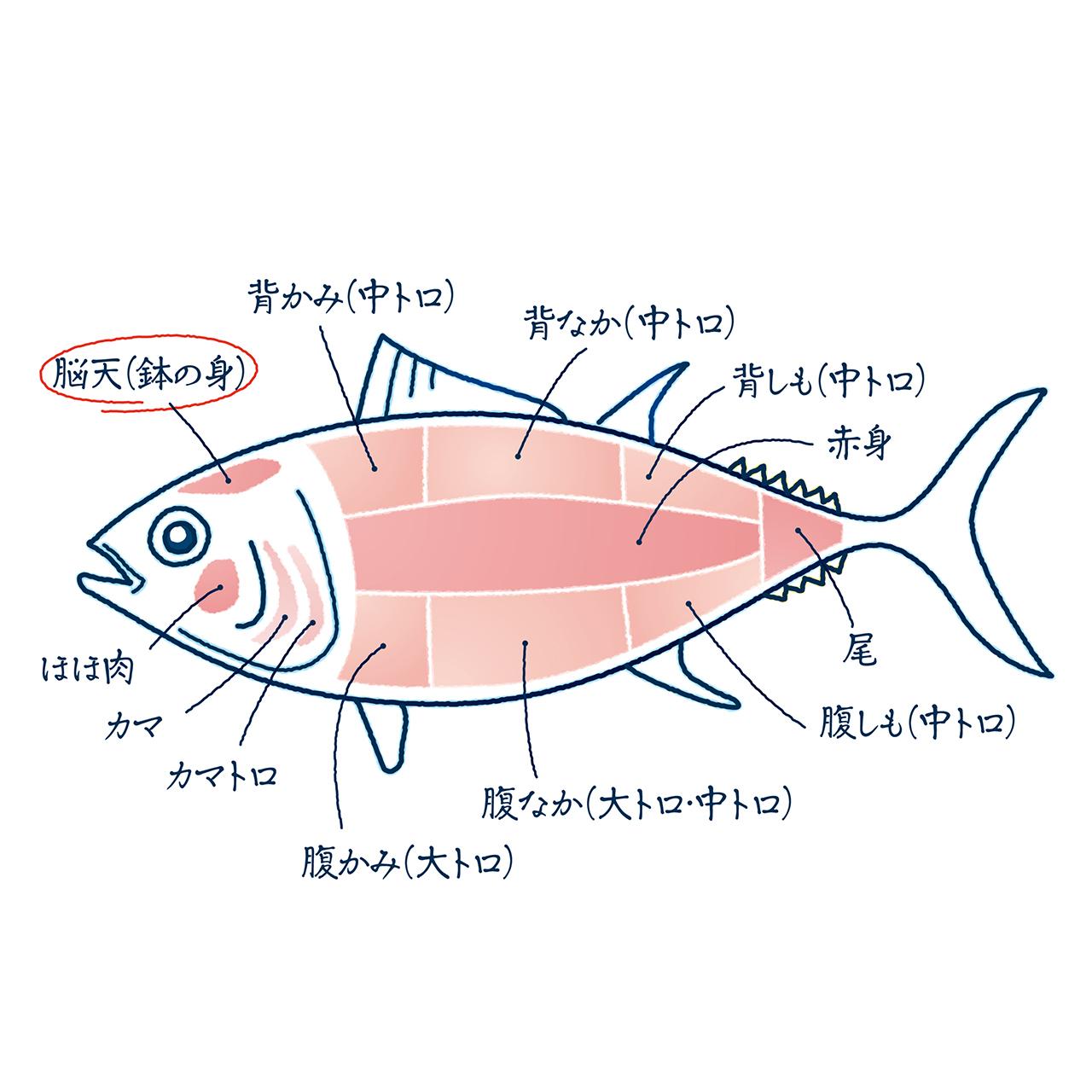 (0323)【BASE1周年記念セール第2弾!】ミナミマグロ頭肉煮付け