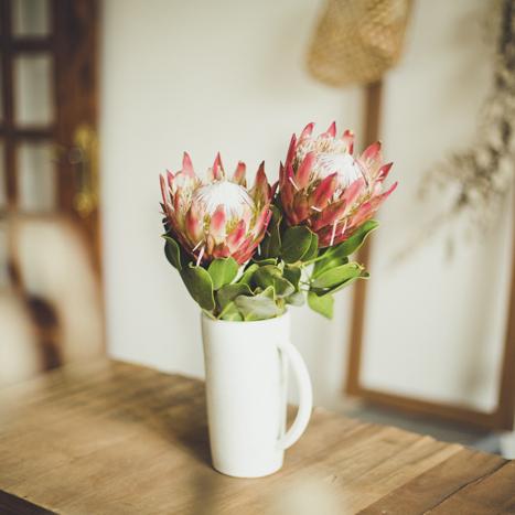 手付き花活け 花瓶 / Vase with Handle