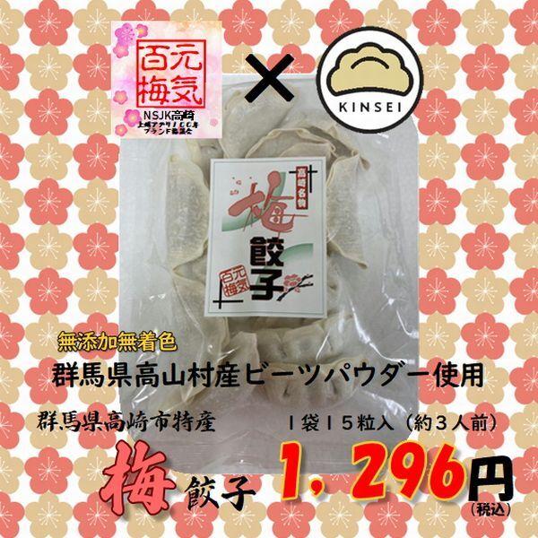 【数量・季節限定】群馬県高崎名物梅餃子【1袋15粒入】