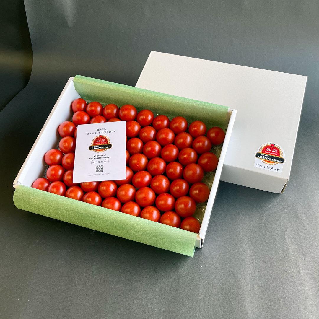 【送料無料】ララ・トマテーゼ フルーツトマト・ギフトBOX 900g入り×2箱