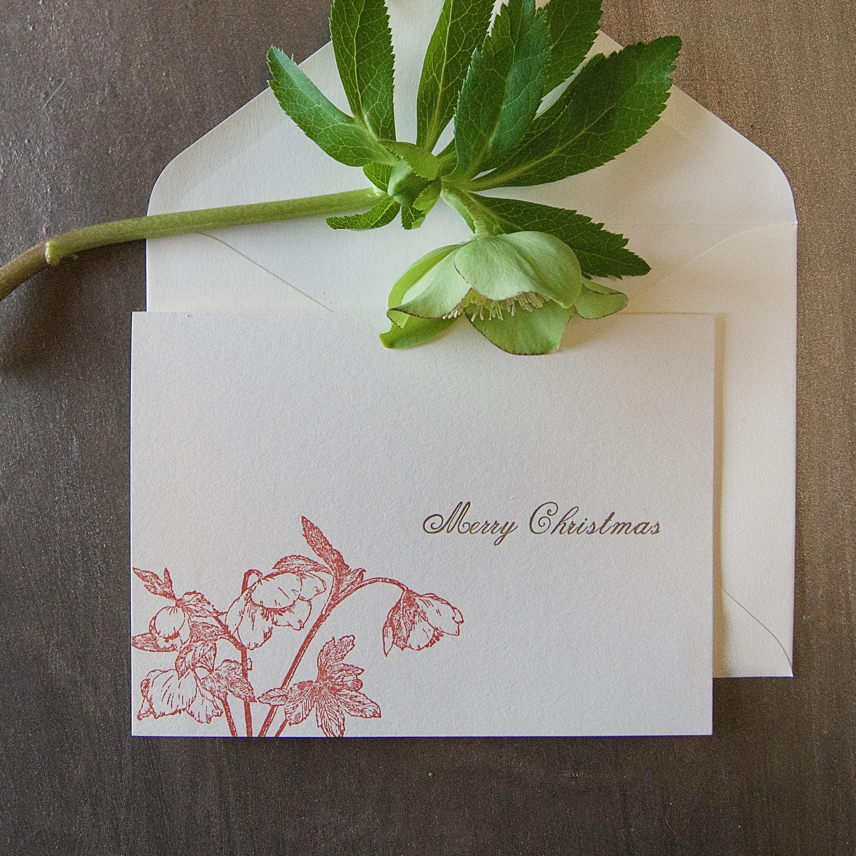 【クリスマスカード】 クリスマスローズ / カード1枚+封筒1枚セット/活版印刷