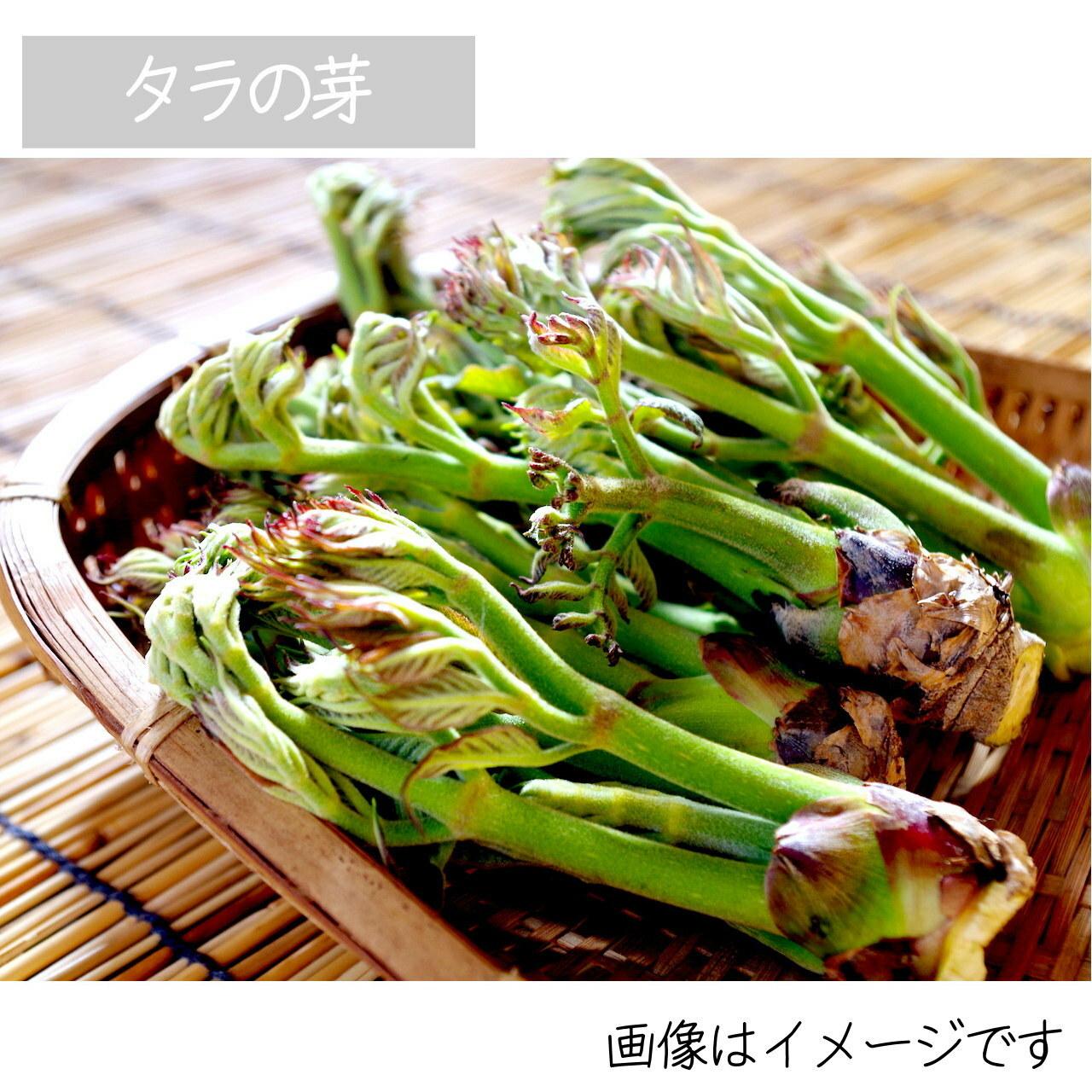 山菜 わらび  5月の朝採り直売野菜 5月18日発送予定