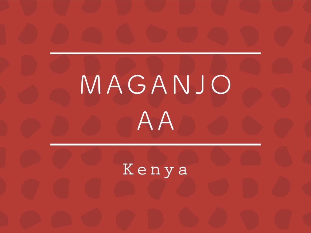 【200g】ケニア / MAGANJO AA