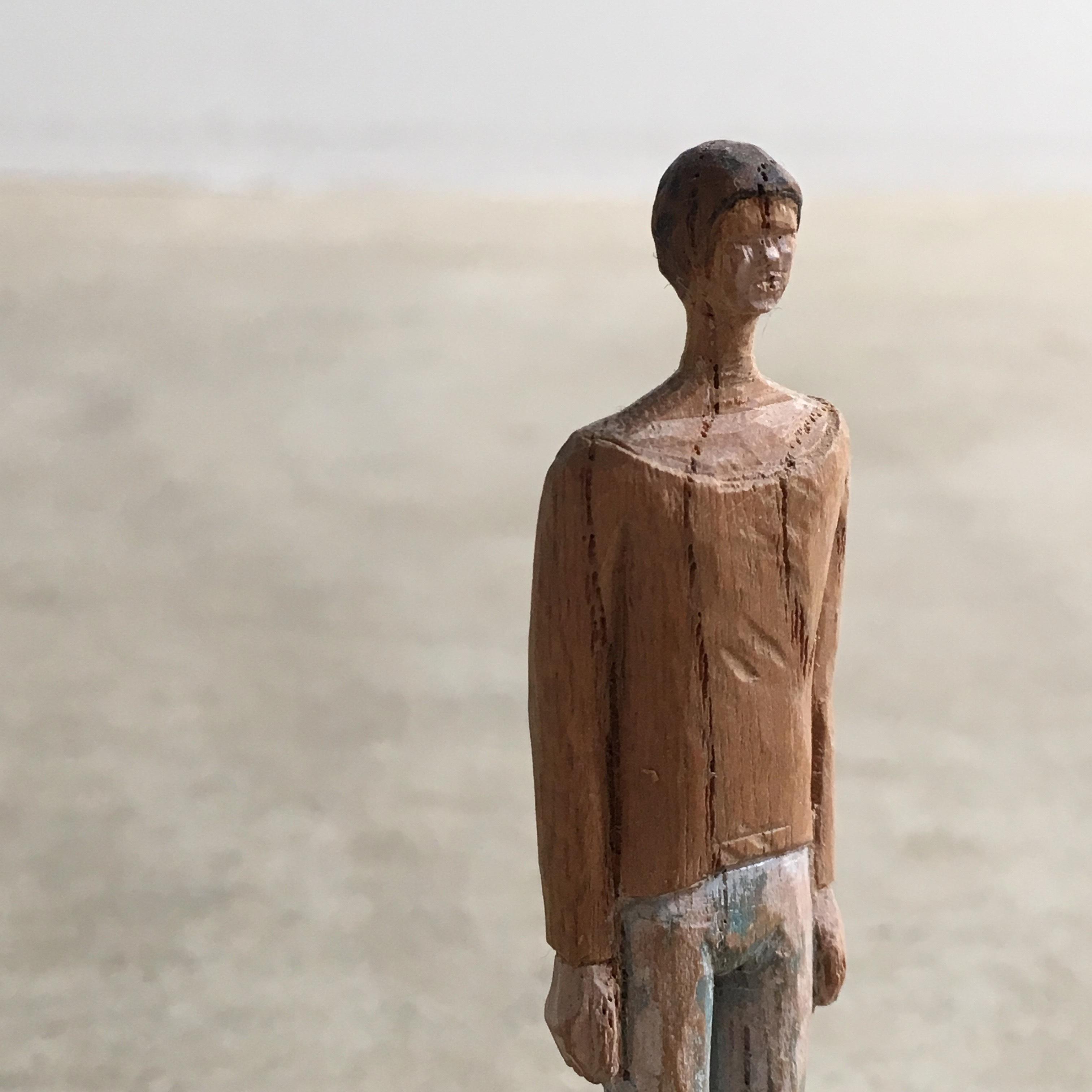 Wood figure / olectronica