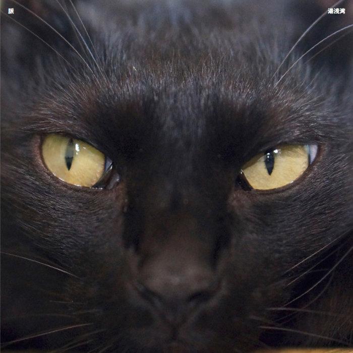 湯浅湾 - 脈 (CD)