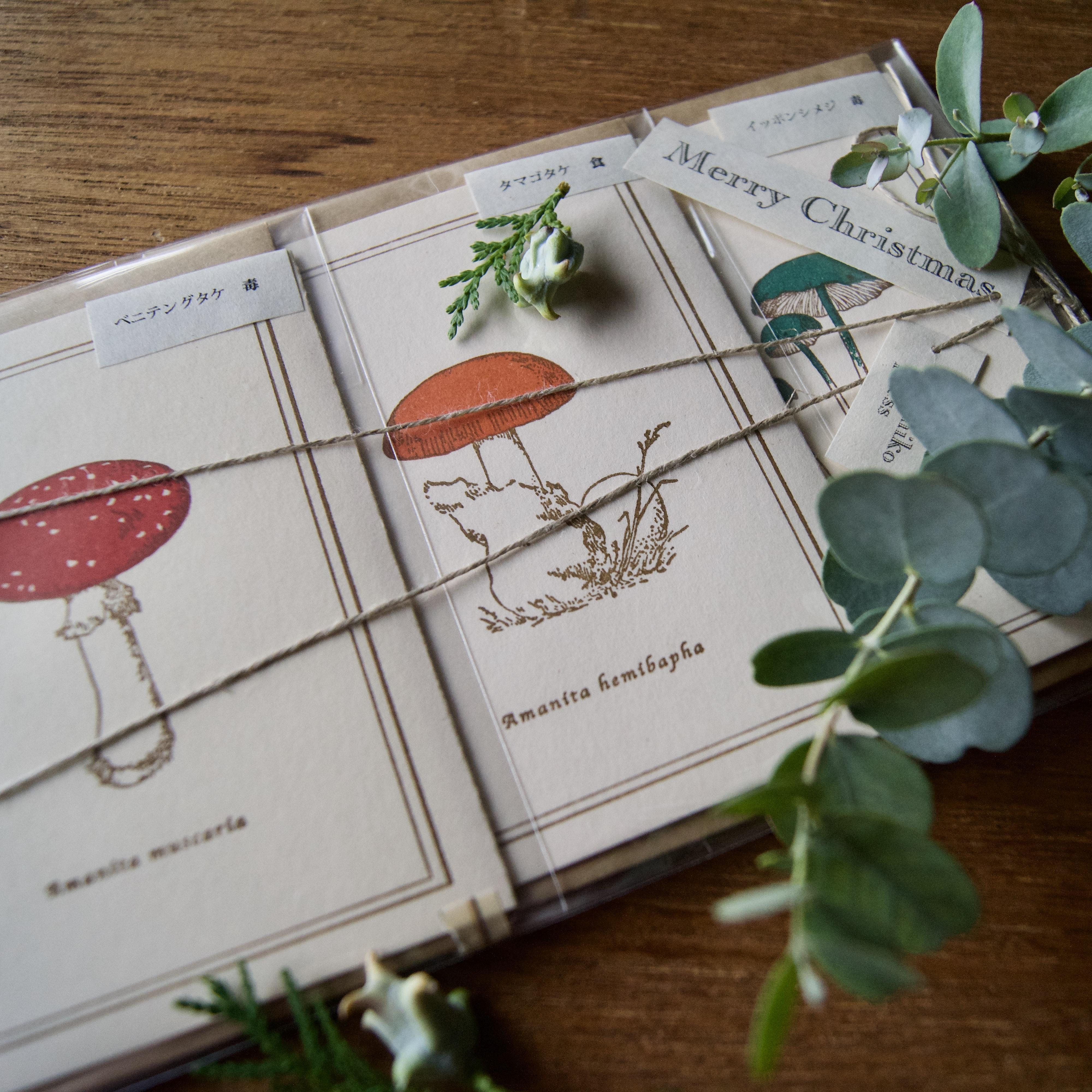 【クリスマスwrapping】森のキノコ / カード3枚+封筒3枚セット/活版印刷