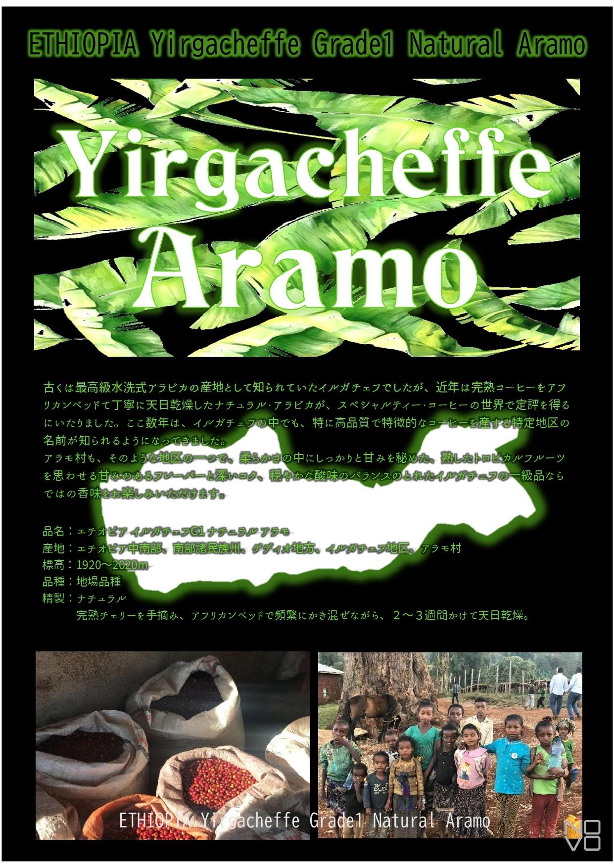 エチオピア イルガチェフG1 アラモ村 200g ハイロースト(中浅煎り) ナチュラル