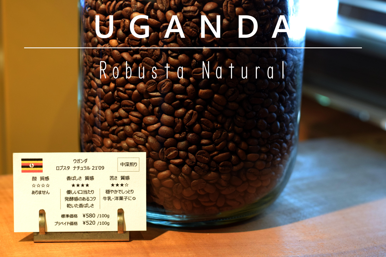 [ 今月の豆 ]中深煎り/ウガンダ ロブスタ ナチュラル 100g