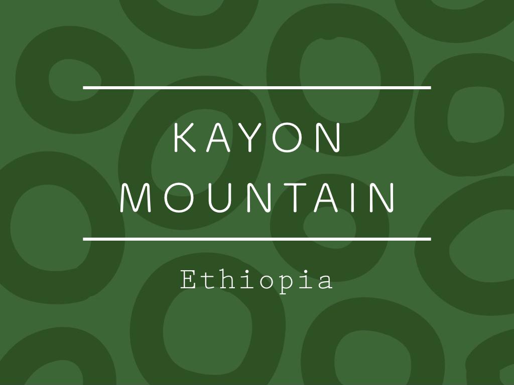 【100g】エチオピア / KAYON MOUNTAIN Washed