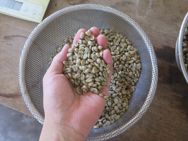 土鍋焙煎コーヒー豆 シングル各種 200g - 画像5