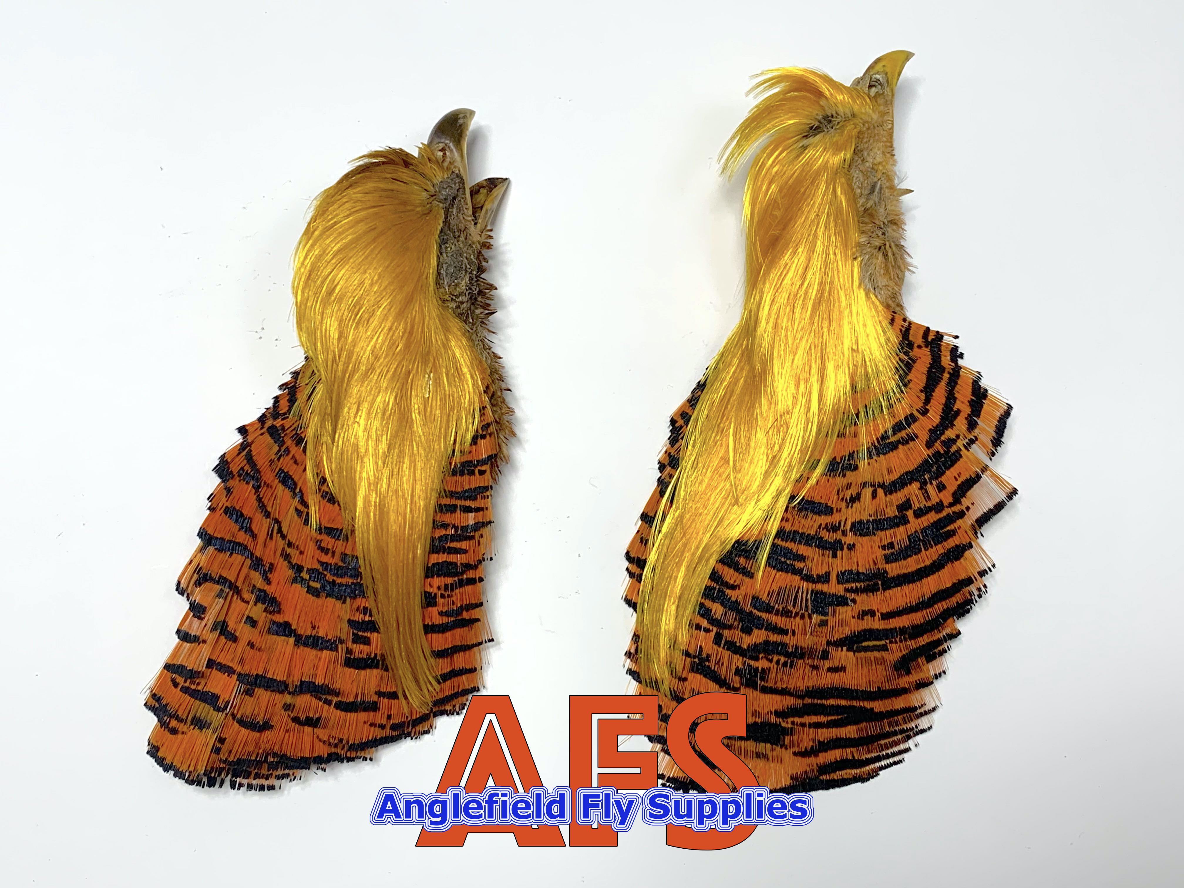 【 解禁目前セール品 】Golden Pheasant COMP Head / ゴールデンフェザントCOMPヘッド