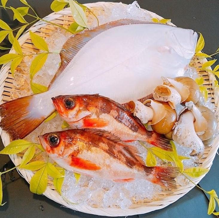 富山湾 鮮魚詰合せ(上)