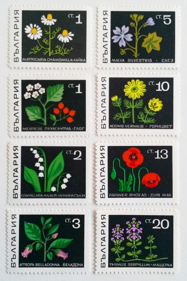 花 / ブルガリア 1969