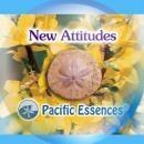 ニューアティテュード[New Attitude]『新たなる姿勢』