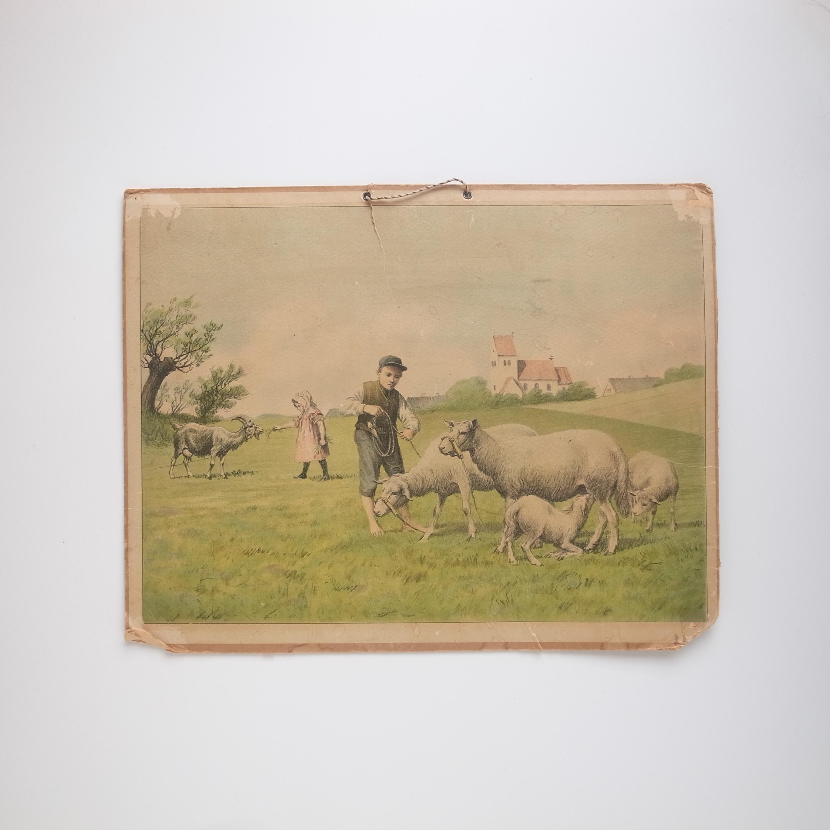 Poster / Pastoral Landscape