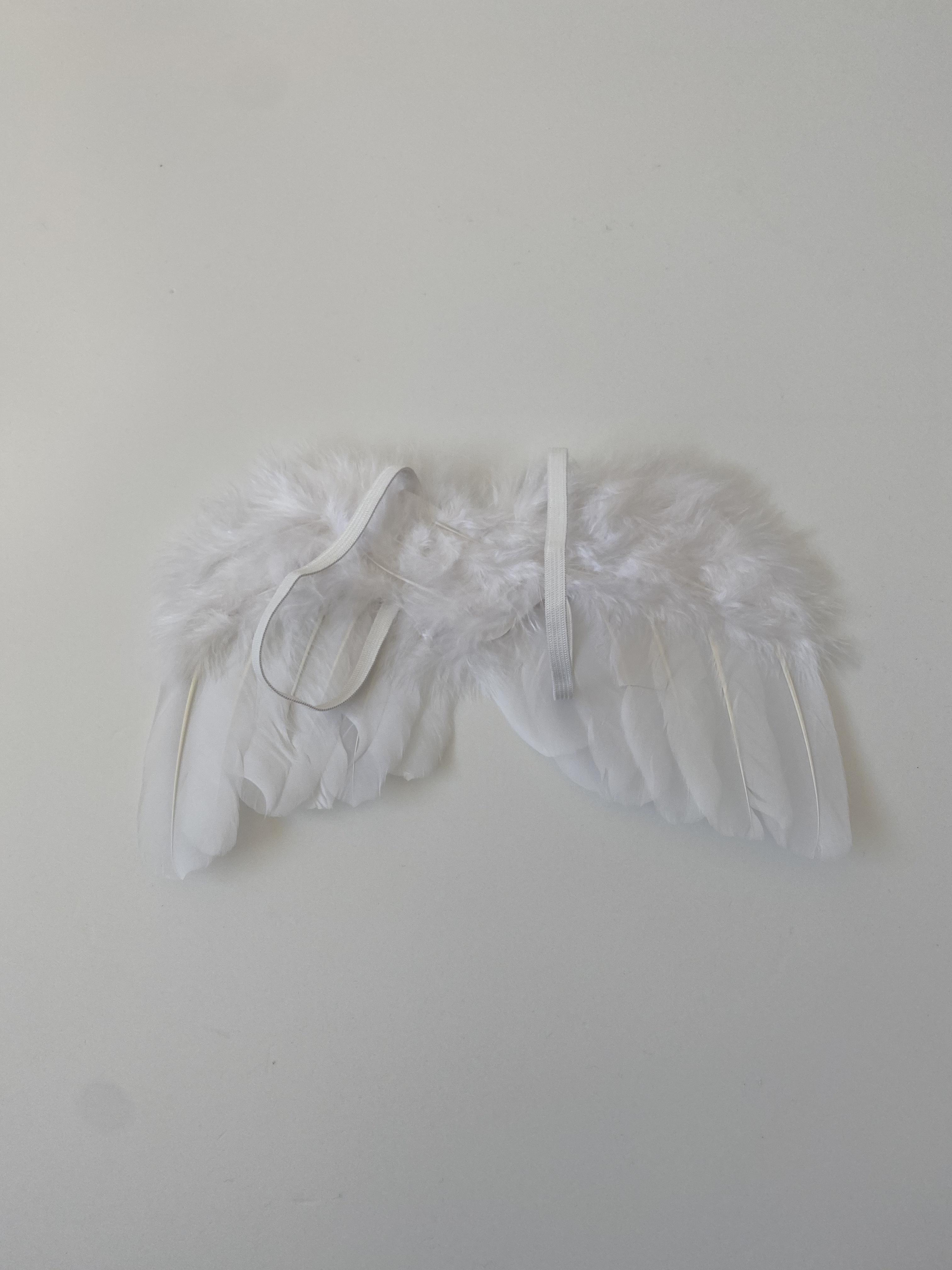 angel 's wing