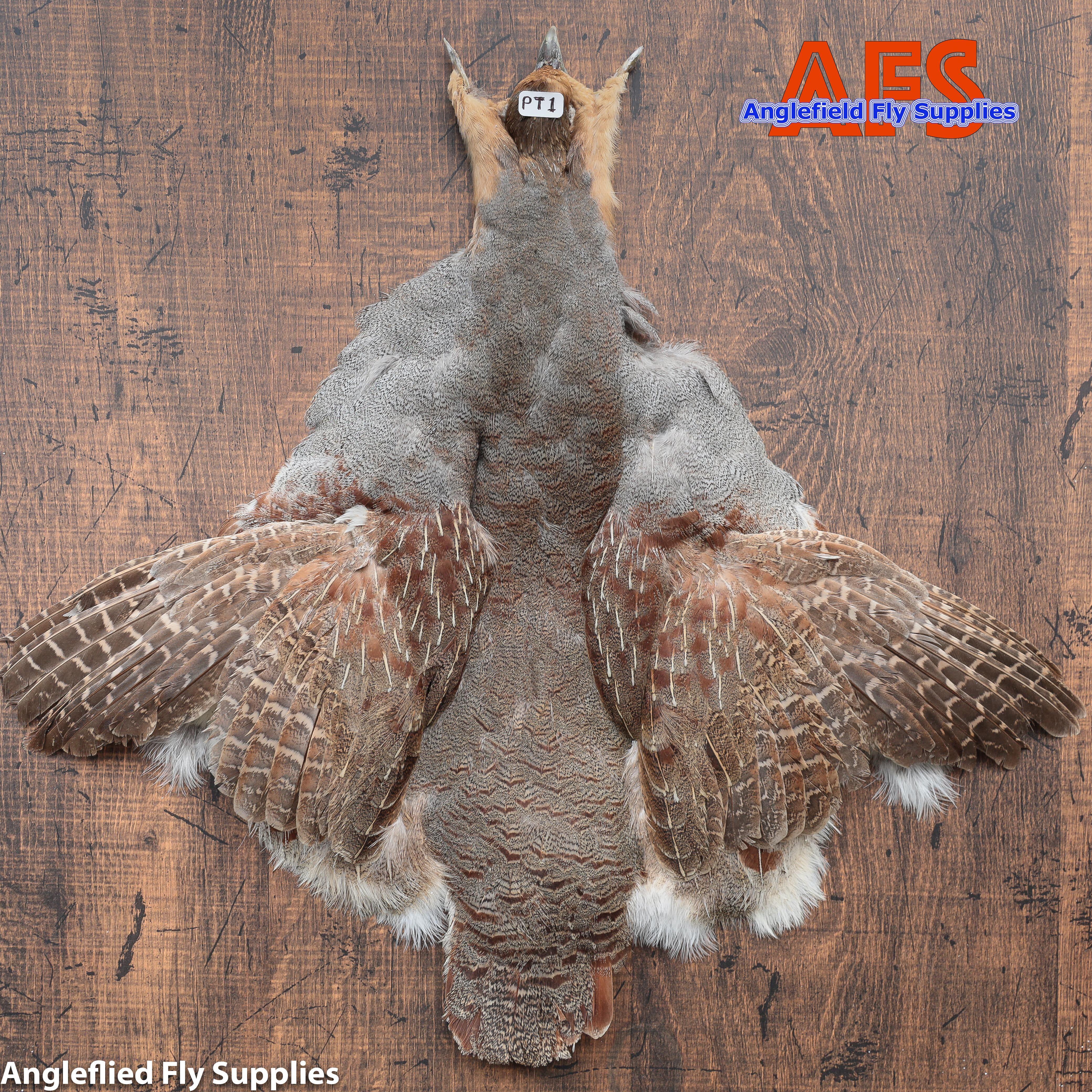 【 AFS 】Partridge COMP. Skin  #S Grade