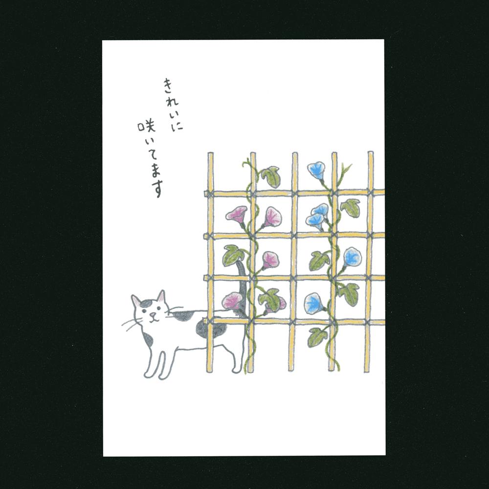 猫ポストカード(四季きれいに咲いてます)
