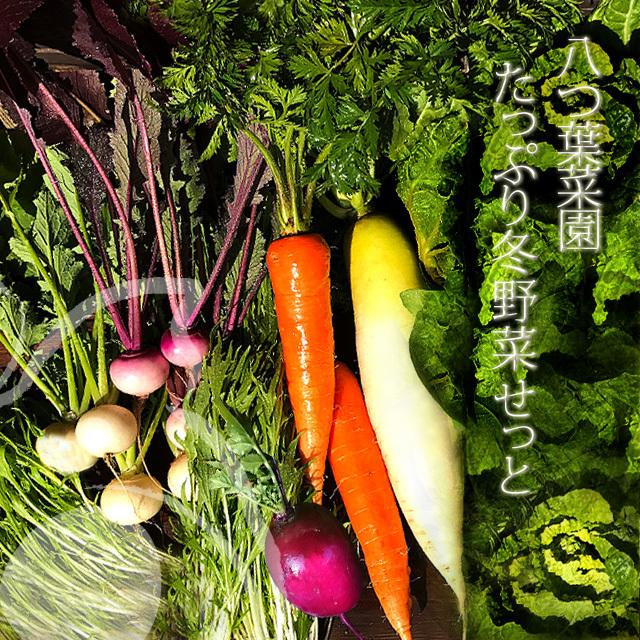 八つ葉菜園 たっぷり冬野菜せっと