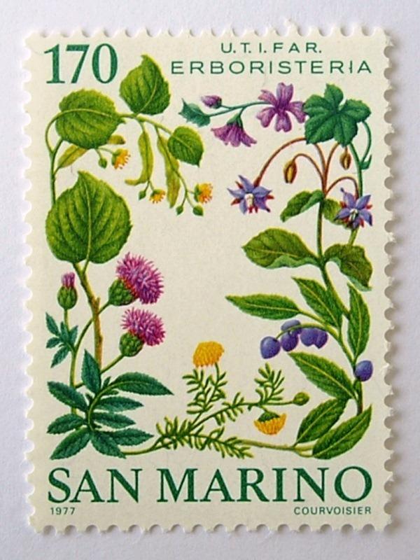 薬草 / サンマリノ 1977