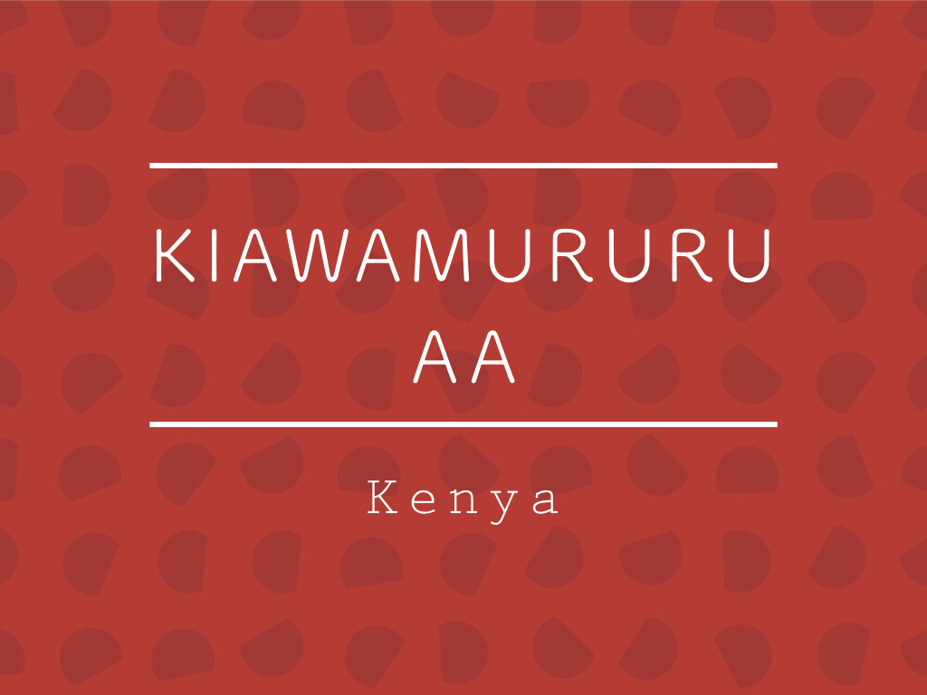 【100g】ケニア / KIAWAMURURU AA