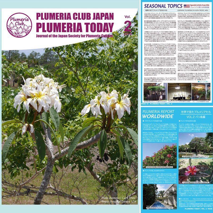 【冬越し特集号】プルメリア情報誌「Plumeria Today」 VOL.2(追録付き)