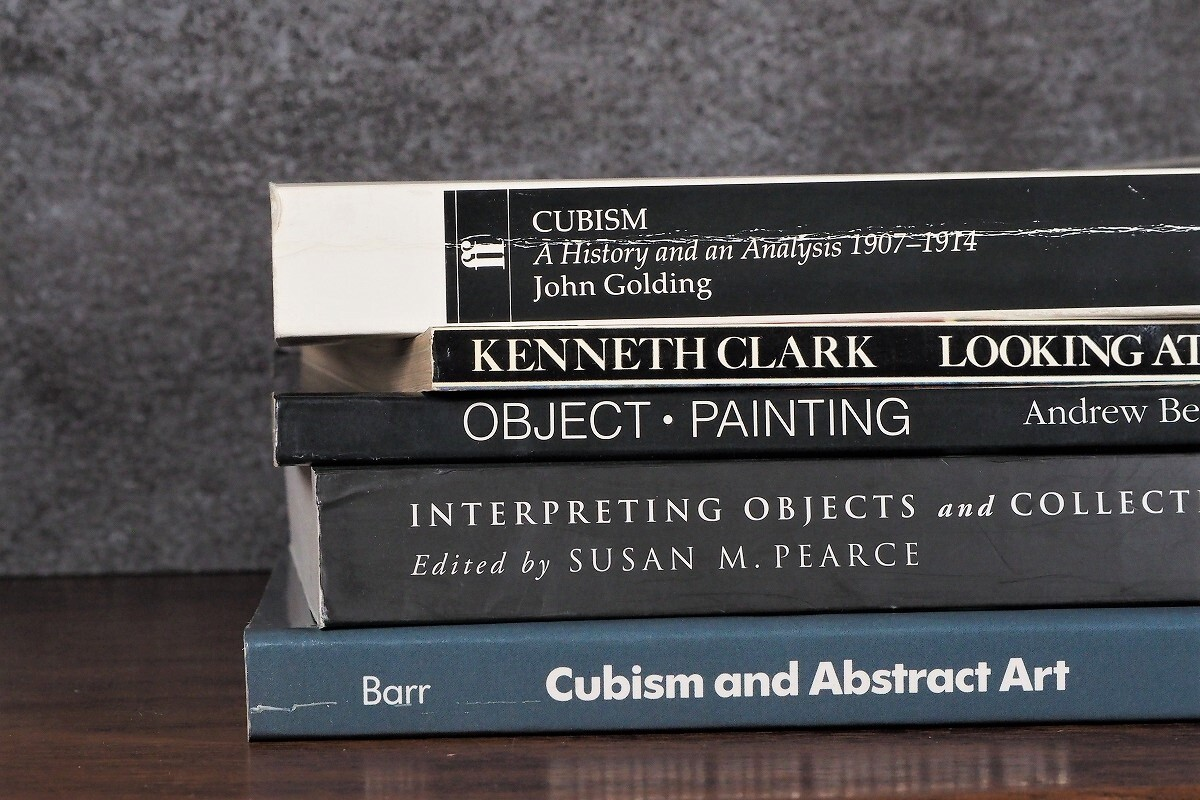 【SPECIAL PRICE】【DS244】CUBISM -5set- /display book