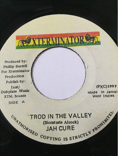 Jah Cure(ジャーキュア) - Trod In The Valley【7'】