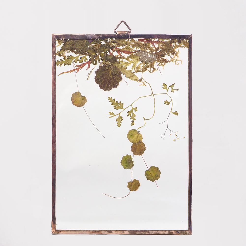 Botanical Frame S37 - Copper