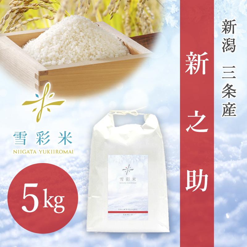 【雪彩米】三条産 令和2年産 新之助 5kg