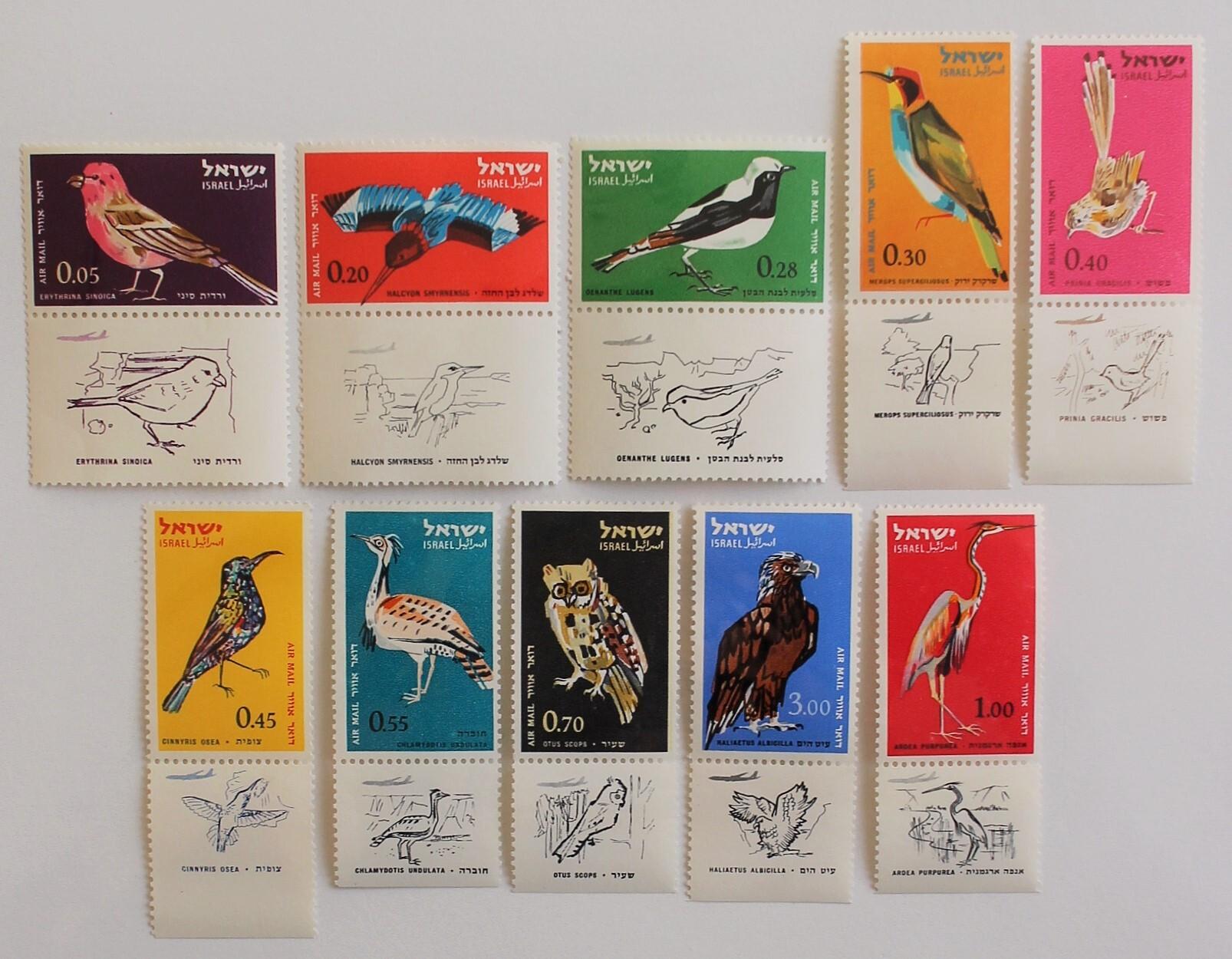 鳥 / イスラエル 1963