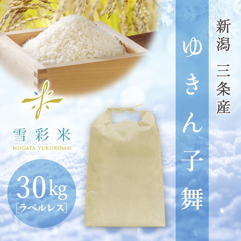 【雪彩米】三条産 令和2年産 ゆきんこ舞 30kg