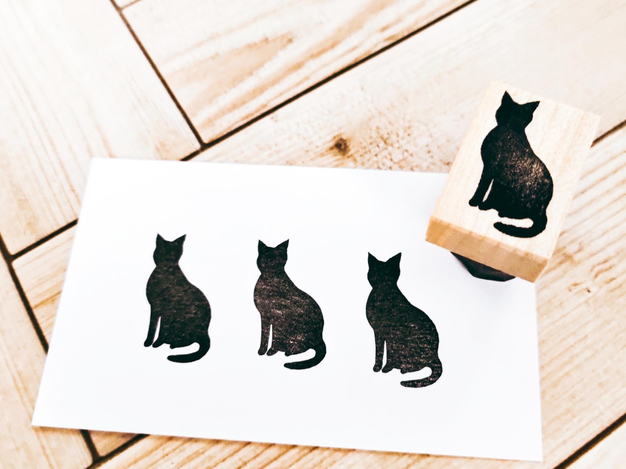 猫⑥「おすわり」
