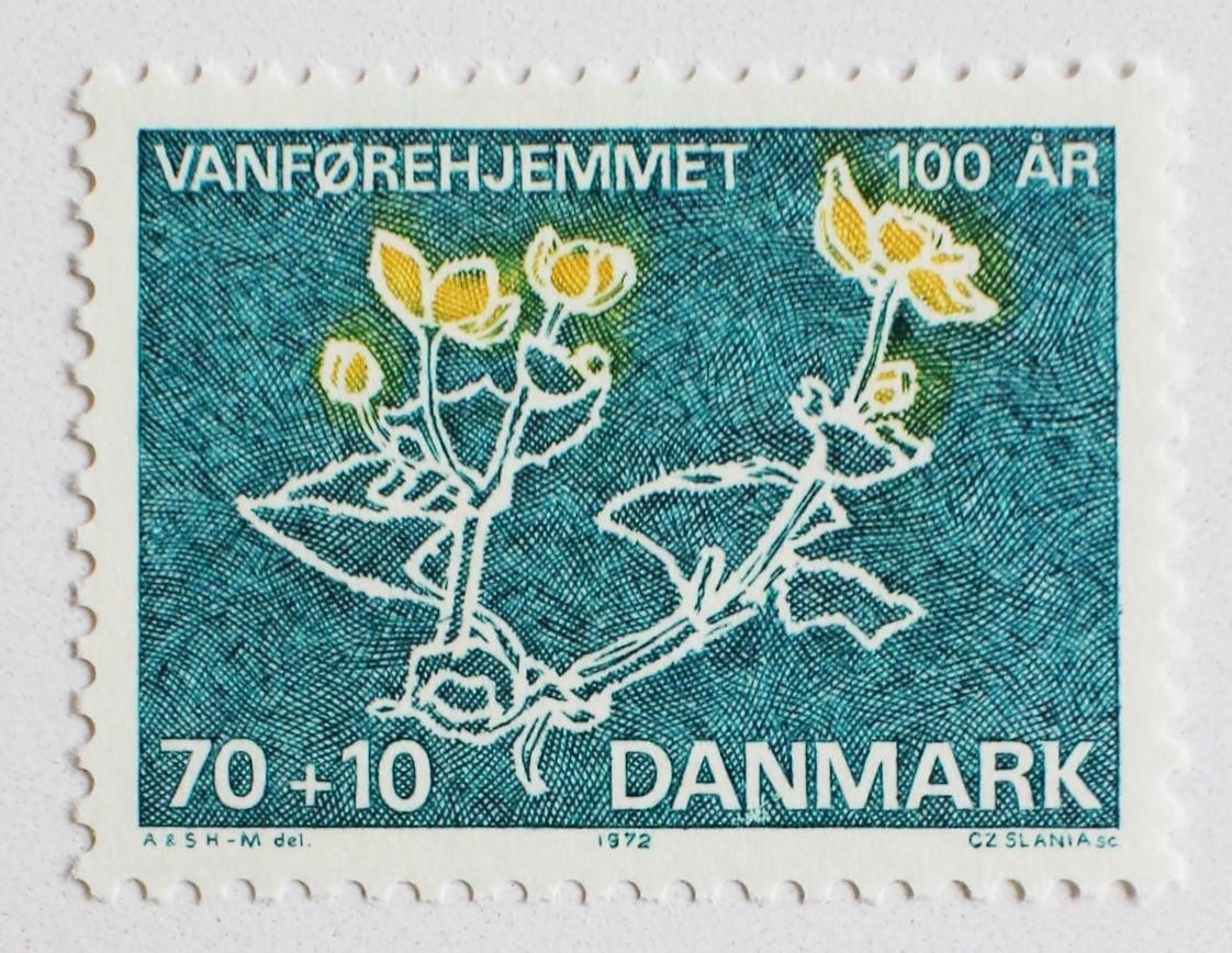 障害者ホーム100年 / デンマーク 1972
